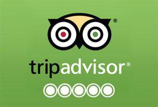 Bike Tours Haarlem - 5 star rating